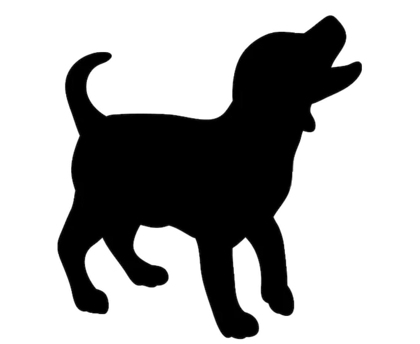 Hondenschool Cuijk puppycursus